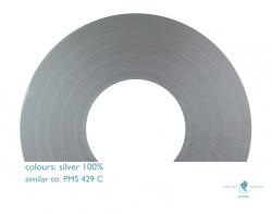 silver100